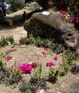 """Vista del monumento """"la piedra"""", donde fueron enterrados los restos del poeta y escritor Ernesto Cardenal en Solentiname, Nicaragua, este viernes 6 de marzo en un ambiente íntimo, sin ceremonia ni rituales. (Foto Prensa Libre: EFE)"""