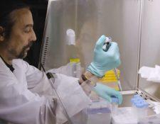 El doctor Adolfo García-Sastre dirige actualmente el Instituto Mundial de Salud y Patógenos Emergentes. (Foto: Escuela de Medicina Icahn)