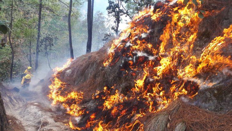 Los incendios forestales entraron en su última etapa (Foto Prensa Libre: cortesía Conred)