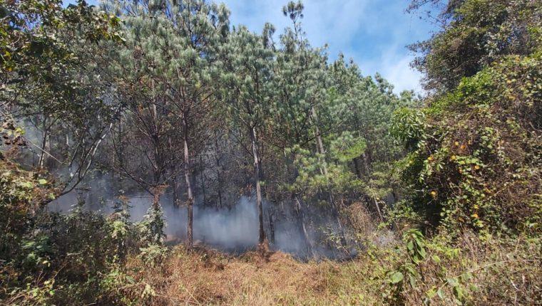 Los incendios forestales arrasas grandes extensiones de bosque cada año en Guatemala. (Foto Prensa Libre: Víctor Chamalé)