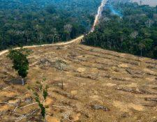 La Amazonía se pierde a un ritmo alarmante. (Foto: AFP)