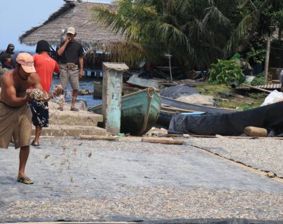 En Izabal los pescadores señalan que necesitan apoyo de programas sociales para sobrepasar los tiempos de veda. (Foto Prensa Libre: Dony Stewart)
