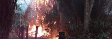 Fuego amenaza el Parque Nacional Yaxhá, en Flores, Petén. (Foto Prensa Libre: Conred).