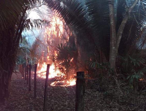 Incendio forestal amenaza el Parque Nacional Yaxhá en Petén