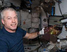 El astronauta de la NASA Steve Swanson con una de las lechugas cultivadas en la ISS. (Foto Prensa Libre: EFE)