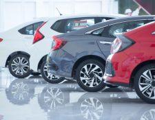 El total de importaciones de vehículos nuevos en el 2019 fue de 160 mil 975 unidades. (Foto Prensa Libre: Shutterstock)