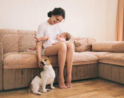 Sí es posible la convivencia entre un bebé y un perro. (Foto Prensa Libre: Servicios).