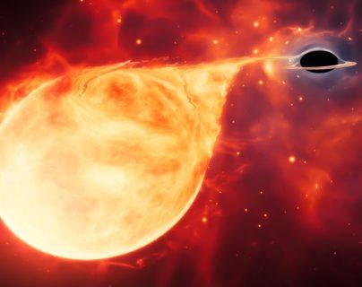 Ilustración: el hipotético agujero negro se reveló a sí mismo al desgarrar una estrella que se acercó demasiado. ESA/HUBBLE, M. KORNMESSER