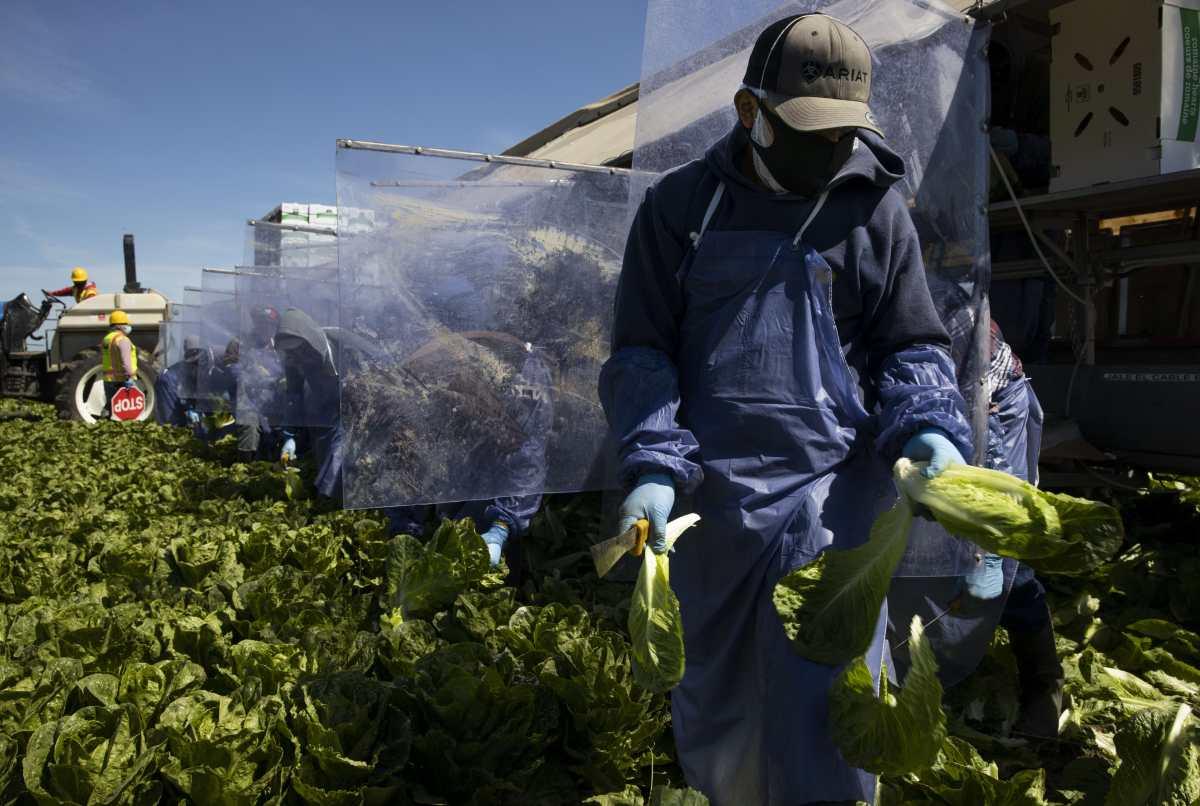El sorprendente salto de las remesas en Guatemala un año después del inicio de la pandemia