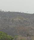 VIDEO: Incendios consumen cientos de hectáreas de bosques en Petén