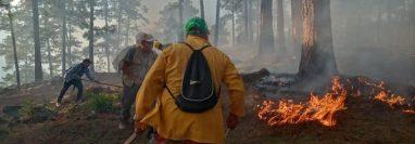 Las altas temperaturas en Petén no contribuyen a combatir los incendios en áreas protegidas. (Foto Prensa Libre: Conap)