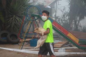 Algunos menores salvaron a sus mascotas y los llevaron a otro lugar. Foto Prensa Libre: Óscar Rivas