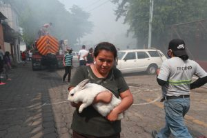 Berta Muñóz corrió para salvar a su coneja Lola del incendio. Foto Prensa Libre: Óscar Rivas