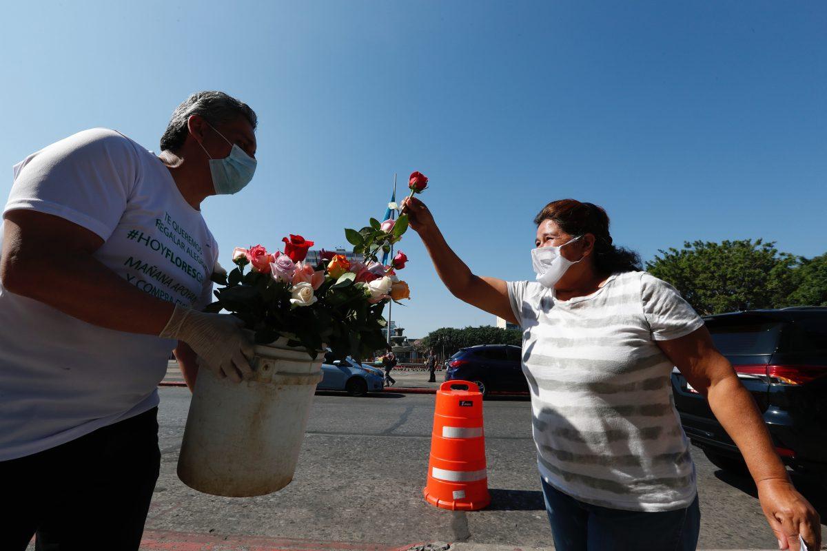 Fotogalería: flores que llevan fe, alegría y esperanza en el país