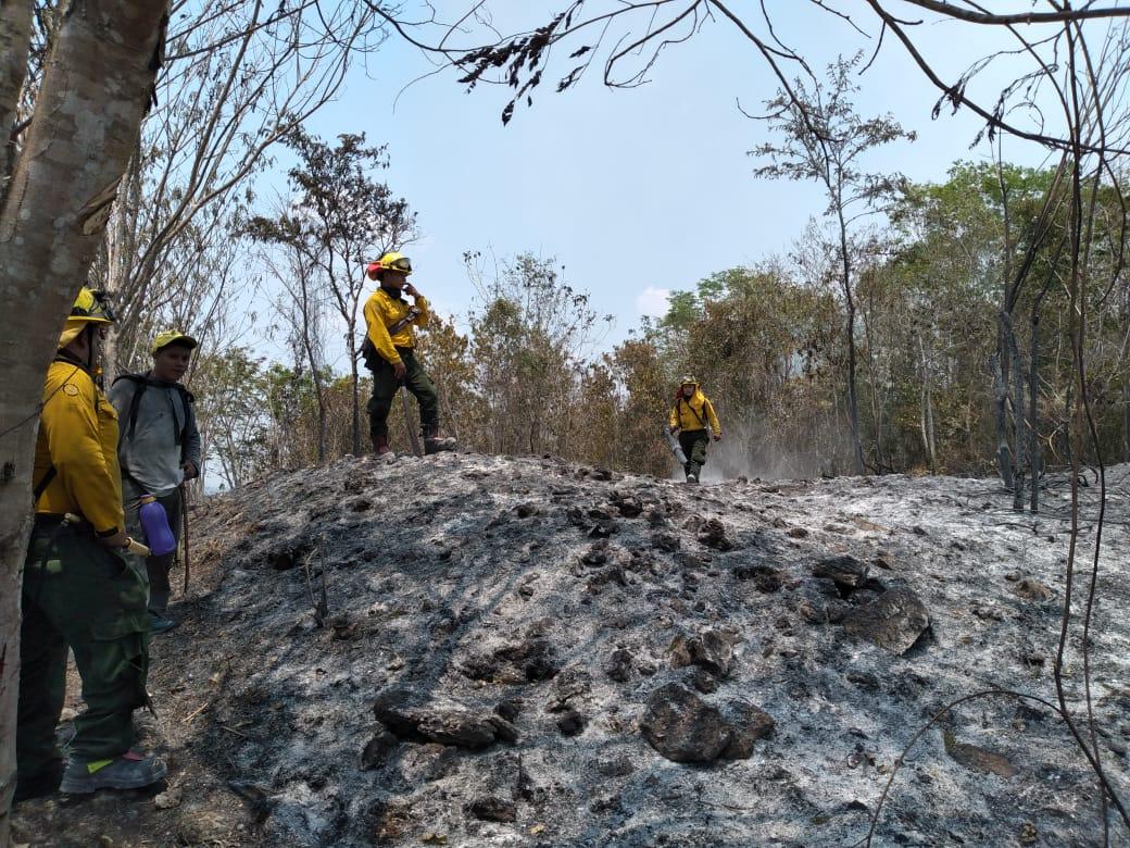 Cómo la caza de un venado originó un incendio que arrasa parte de la Reserva de la Biosfera Maya