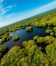 Guatemala posee innumerables recursos naturales, como los manglares de Monterrico, Santa Rosa. (Foto Prensa Libre. Cortesía Sergio Izquierdo)
