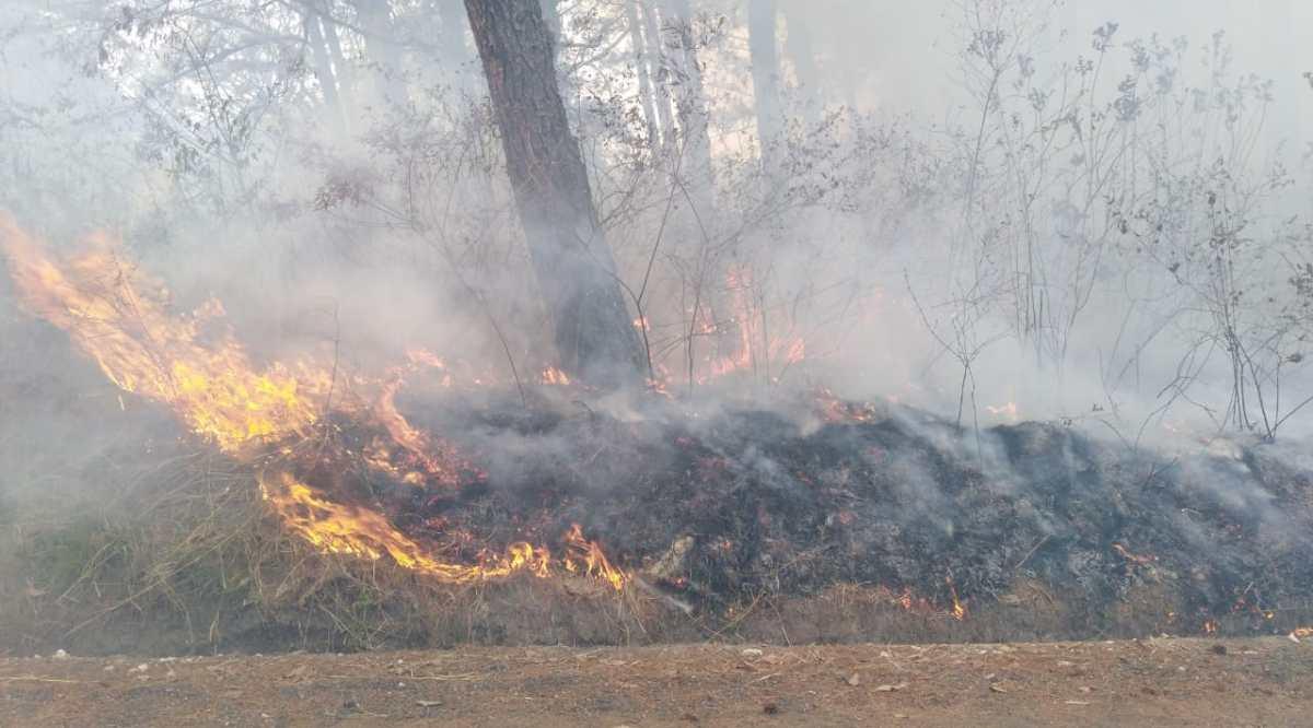 Cinco incendios forestales afectaron varios puntos de la ciudad de Guatemala durante el fin de semana
