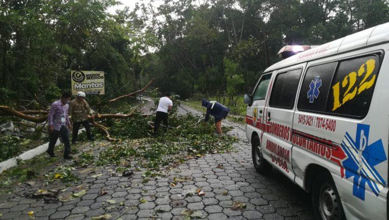 En Samayac, Suchitepéquez, la lluvia derribó postes de energía eléctrica y árboles. (Foto Prensa Libre: Conred)