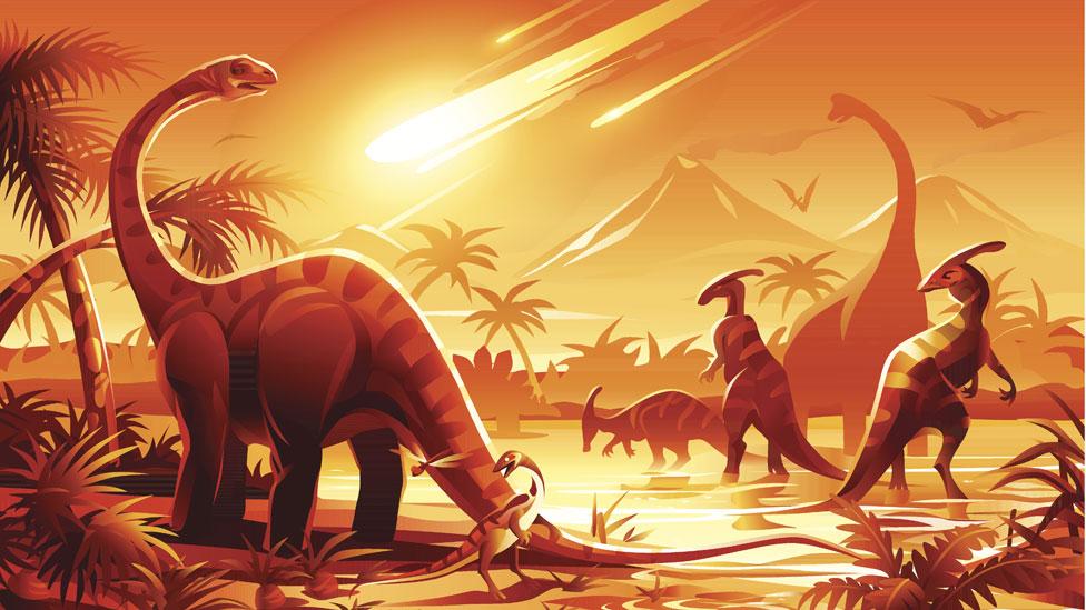 ¿Cuál será la especie dominante si (o cuando) los humanos nos extingamos?