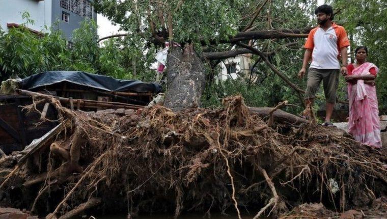 El súper ciclón Amphan arrancó árboles y provocó innumerables de destrozos por su paso por India y Bangladés. REUTERS