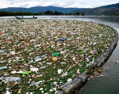 Día de la Tierra: Amsa agoniza y con ella también el lago de Amatitlán