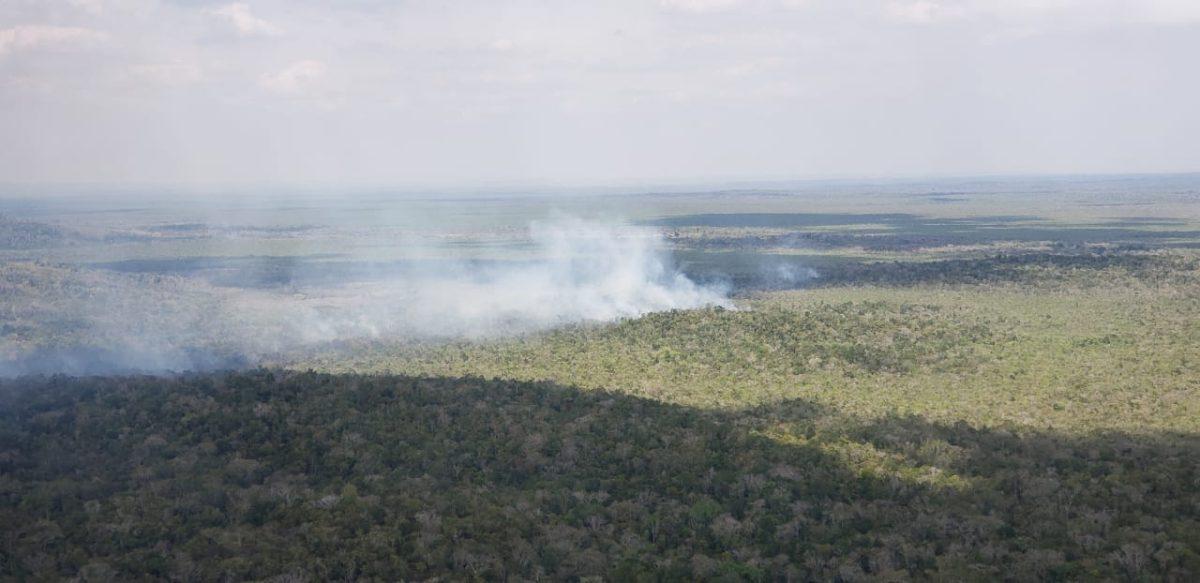 Cómo empezó el incendio forestal que amenaza al Parque Nacional Mirador Río Azul, donde nunca se había reportado un siniestro