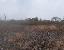 Al menos 19 incendios forestales continúan activos en Petén. (Foto Prensa Libre: Conred)