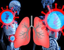Un sistema respiratorio fortalecido ayudará a enfrentar al covid-19 de mejor manera. (Foto Prensa Libre: Pixabay)