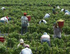 El desempleo en Estados Unidos a causa del covid-19 impactará en el ingreso de divisas por remesas familiares en Guatemala, según las autoridades del Banguat. (Foto Prensa Libre: Hemeroteca)