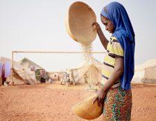 En algunas regiones del norte de África las niñas son obligadas a comer desde que cumplen cinco años de edad y hasta que alcanzan una edad adulta.