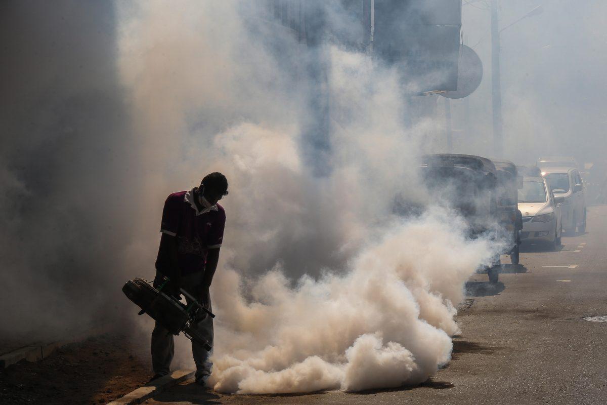 Dengue y huracanes complicarán la respuesta al coronavirus en Latinoamérica