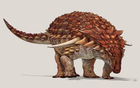 Así era el dinosaurio descubierto en Alberta, Canadá, según la Fundación para el Estudio de los Dinosaurios en Castillo y León. (Foto: AFP)