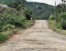 Parte del tramo de la Franja Transversal del Norte que no se ha finalizado. (Foto Prensa Libre: Hemeroteca PL)