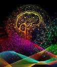 El cerebro humano es un misterio que los expertos aun trabajan por desenmarañar. (Foto Prensa Libre: Pixabay)