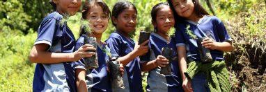 El Día Mundial del Medio Ambiente cada 5 de junio es una de las fechas más importante para fomentar la acción ambiental. (Foto Prensa Libre: Reforestando Purulhá)