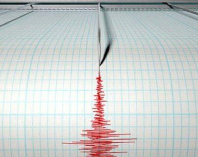 Según Protección Civil, 17 de estos temblores de tierra han resultado perceptibles. Fotografía: Prensa Libre.