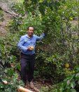 Eleodoro Zelaya muestra una lima que obtuvo de uno de sus árboles frutales que tiene en su terreno que antes producía poco. (Foto Prensa Libre: Cortesía)