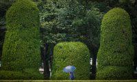 -FOTODELDIA- Hiroshima (Japan), 06/08/2020.- Una mujer camina entre los árboles del Parque Memorial de la Paz en Hiroshima, Japón, este jueves 6 de agosto de 2020 en el que Japón celebra el 75 aniversario del bombardeo de Hiroshima. EFE/DAI KUROKAWA