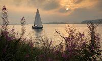 -FOTODELDIA- EA5826. WOLPHAARTSDIJK (HOLANDA), 14/08/2020.- Velero al atardecer después de la lluvia en Veerse Meer, un lago marino en la provincia de Zelanda, Wolphaartsdijk (Holanda). EFE/EPA/OLIVIER HOSLET