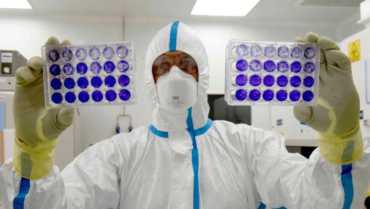 EE. UU. ha criticado la rapidez con que Rusia trabaja en la vacuna contra el coronavirus. (Foto: AFP)
