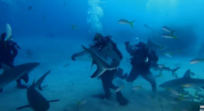 """Mike Tyson vivió una experiencia inolvidable junto a un """"tornado de tiburones"""". (Foto Prensa Libre: Captura Youtube Discovery Channel)"""