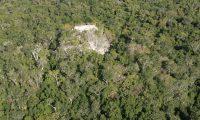 La selva ha sido la mejor guardiana del tesoro arqueológico de la cuenca El Mirador, una zona de cuya conservación depende buena parte de la biodiversidad del país. (Foto Prensa Libre: Hemeroteca)