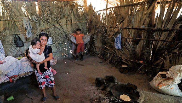 ONU aportará Q7.7 millones para medir impacto de la Gran Cruzada Nacional por la Nutrición
