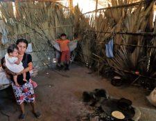 Las galletas fortificadas que compró el Mides serían para atender a niños con problemas de desnutrición. (Foto: Hemeroteca PL)