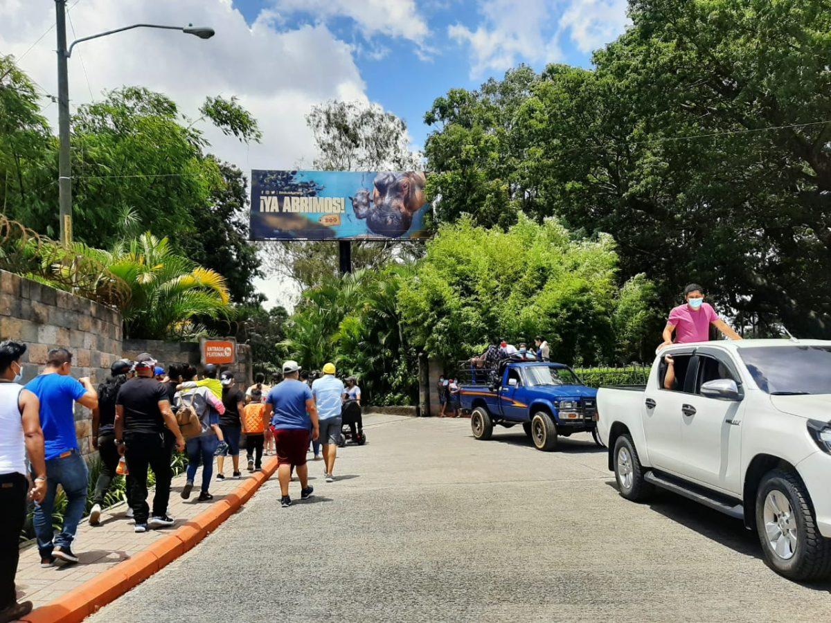 Miles de personas llegan al zoológico La Aurora en el primer fin de semana de reapertura