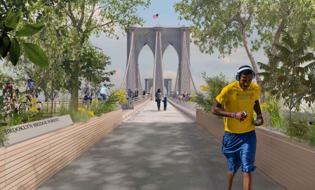 Madera de Petén adornará el emblemático puente de Brooklyn en Nueva York