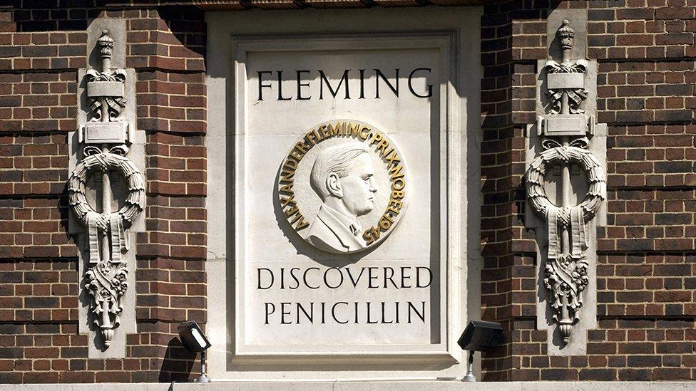 """Quién fue Clodomiro Picado Twight y por qué algunos lo consideran el """"verdadero"""" descubridor de la penicilina"""