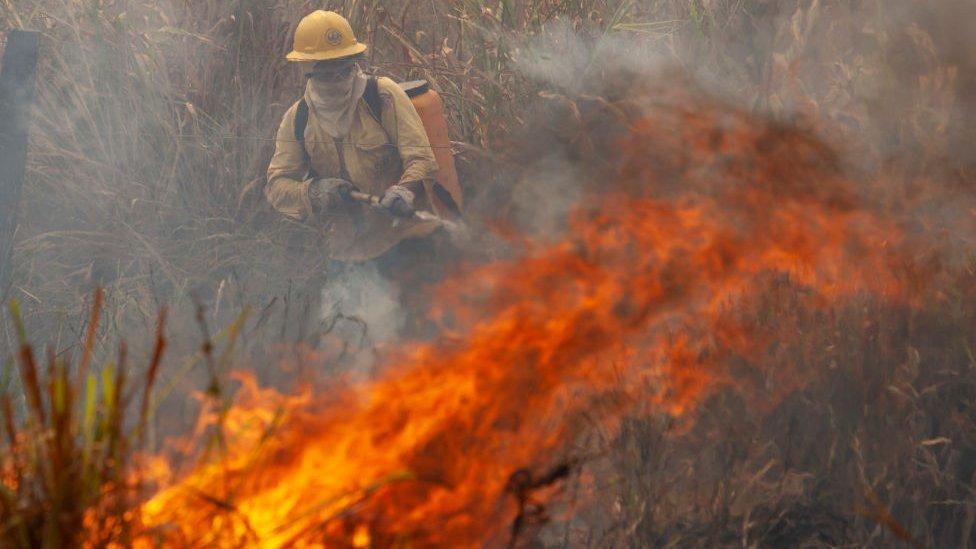 No solo hay incendios en California: gran parte del continente americano está en llamas