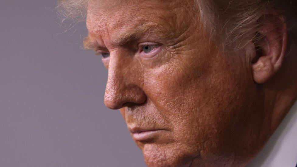 """Trump vs Biden   """"La crisis en EE.UU. va mucho más allá. Trump sólo es un síntoma"""": entrevista a Victoria de Grazia, historiadora y autora premiada"""