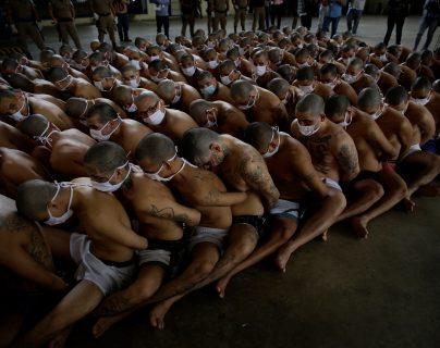 Autoridades de El Salvador presentaron las condiciones en que mantienen detenidos a pandilleros, asegurando que no existe ningún beneficio.  (Foto Prensa Libre: EFE)